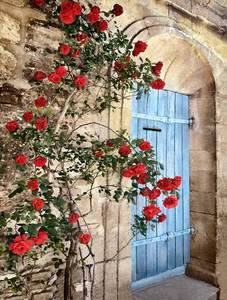 Roses and Blue Door